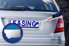 Montana - silver car with LEASING painted in blue